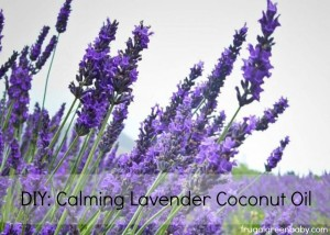 DIY.Calming.Lavender.Coconut.Oil_